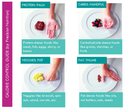 precision nutrition guide